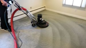 Choosing the best carpet cleaner